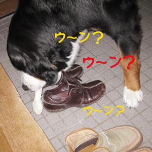 20090814g_2
