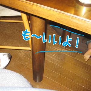 20091015_2