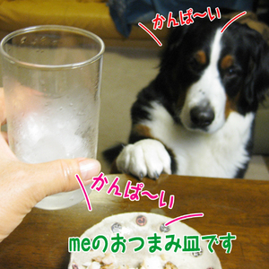 20091215a_2