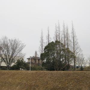 20100216b