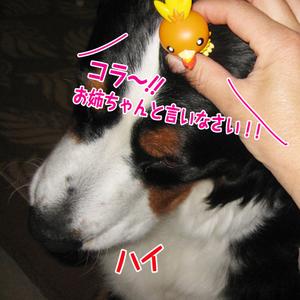 20100325g_2