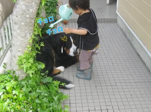 20100509d_2