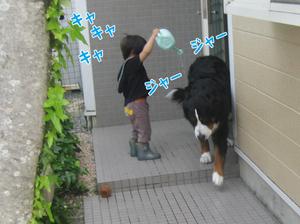 20100509e_3
